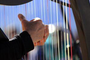 harp snaren