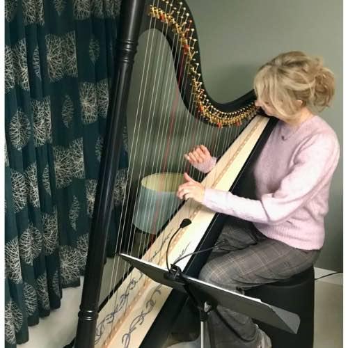 Mijn eerste harplessen